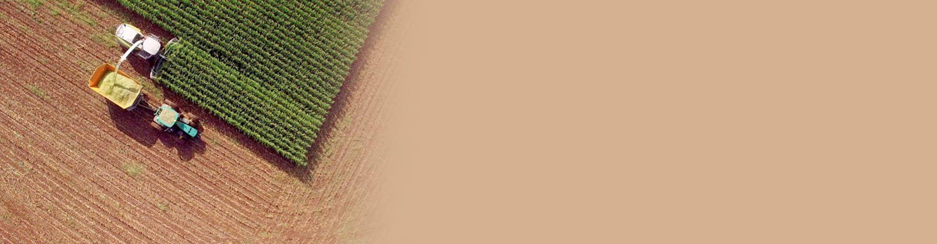 illu_slider-agriculteur-credit-campagne.jpg